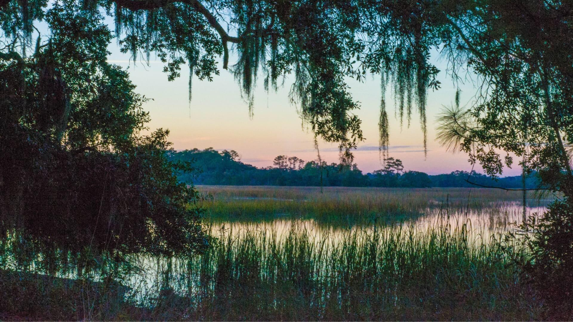 Low Country recipes